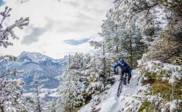 Rider Profile - Ines Thoma
